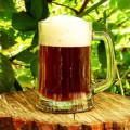 beer_home_88971