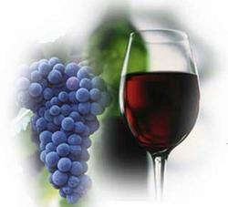 вино из изабеллы