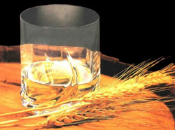 ячмень сырье для алкоголя