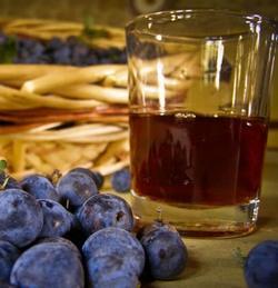 вино и терн