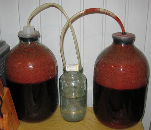 бутыли с вином из терна