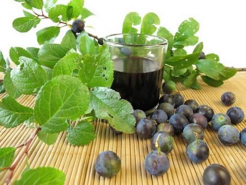 простой рецепт тернового вина