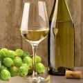 vino_krijovnik_872