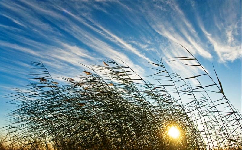 День Лукьяна Ветряка 16 июня 2019 года: почему нужно пристально следить за погодой в этот день