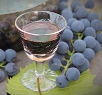 настойка из винограда изабелла