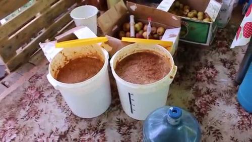 Коньяк из самогона в домашних условиях: рецепт изготовления