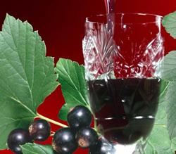 настойка приготовленная из ягод черной смородины