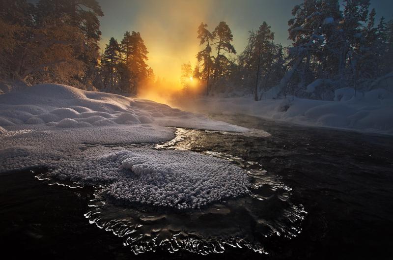 25 февраля — Алексей Рыбный: почему в этот день не стоит начинать новые дела