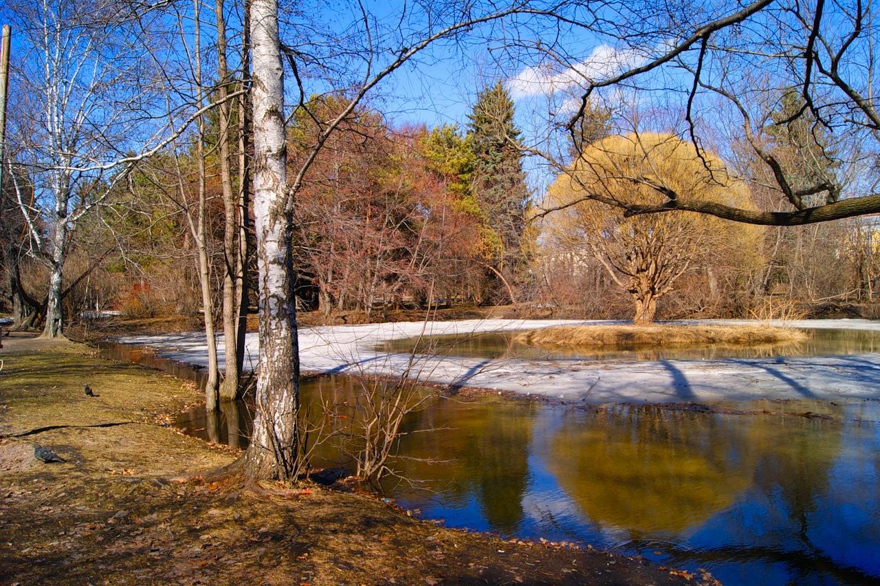 Фото весна март апрель существует