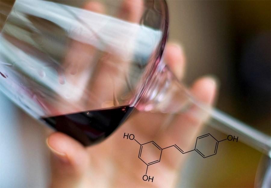 Что такое сульфиты в вине и насколько они вредят здоровью