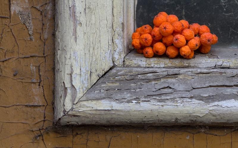 Приметы на 23 сентября – что делать с ягодами рябины, чтобы уберечься от несчастья и сглаза в день Петра и Павла Рябинников